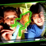 Virtual Frog Dissection