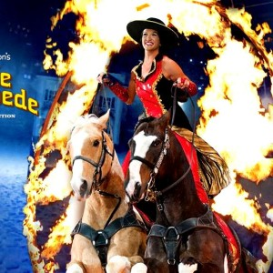 Dixie Stampede Dinner & Show!